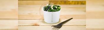 bols pour soupes ou glaces chauds / froids recyclable biodégradable