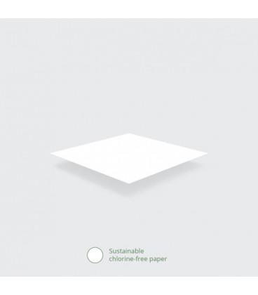 PAPIER ALIMENTAIRE RESISTANT AUX GRAISSES 350X225MM COMPOSTABLE - vaisselle jetable recyclable